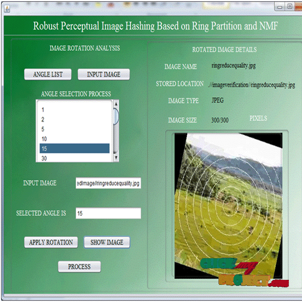 Robust Perceptual Image Hashoiong Based on Ring Partition and NMF