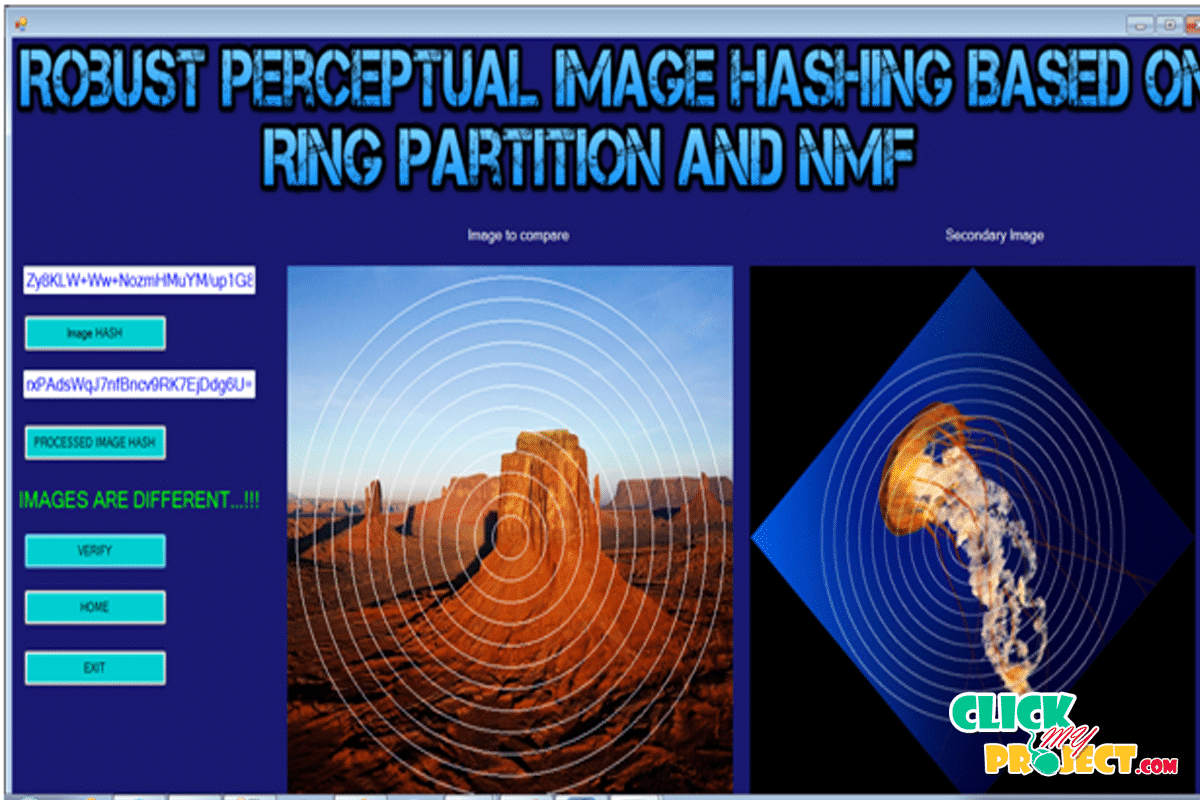 Robust Perceptual Image Hashing Based on Ring Partition and NMF| 2014 Projects