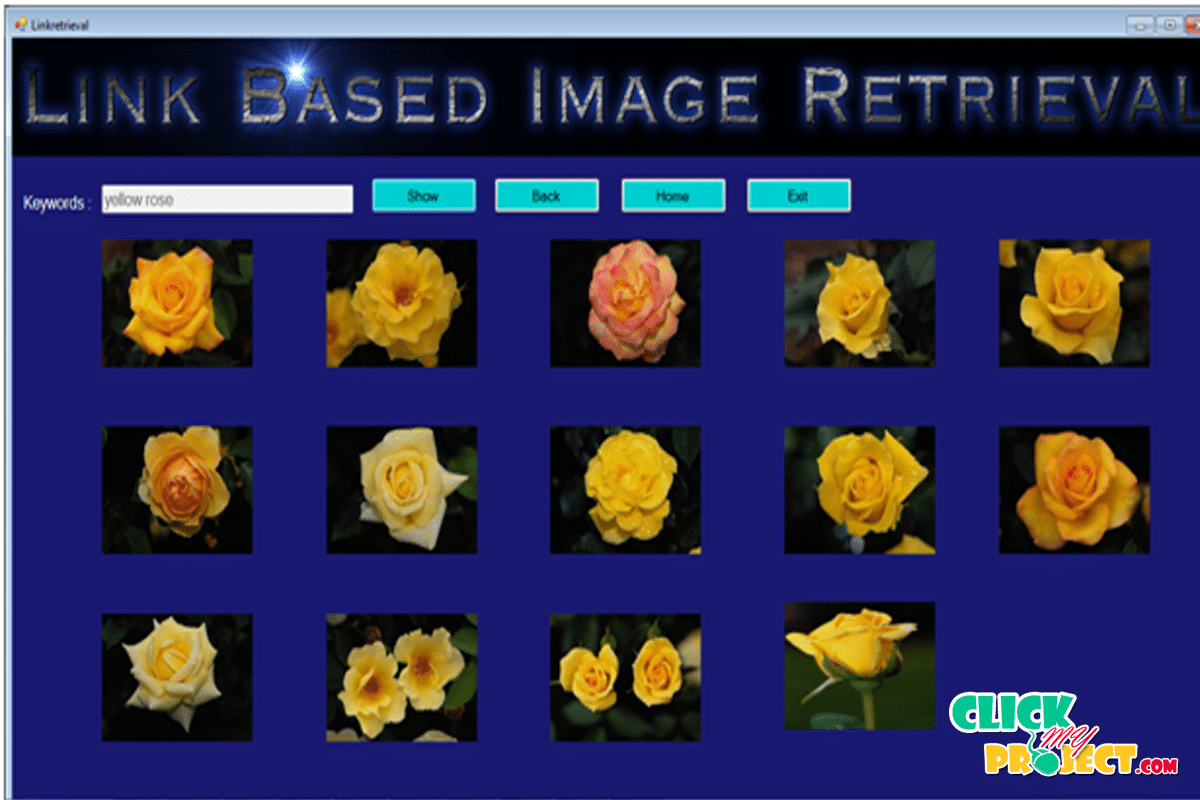 iRIN: Image Retrieval in Image-Rich Information Networks | 2014 Projects