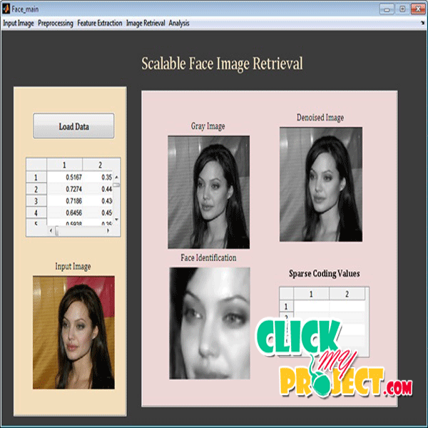 Scalable Face Image Retrieval using Attribute-Enhanced Sparse Codewords| 2014 Projects